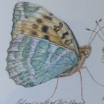 """Fritillaries of the Cotswolds"" Detail"